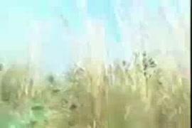 سكس نيك فى القاعدة العسكريه يوتيوب